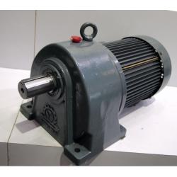 Helical Gear Motor Reducer,Ratio:1:3,466rpm
