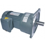 Vertical gear motor reducer