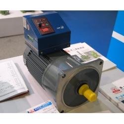 vertical gear motor with converter